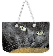 My Nellie-belle's Catitude Weekender Tote Bag