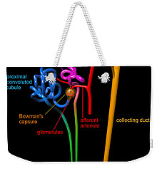 Weekender Tote Bag featuring the digital art Nephron Black With Coloured Labels by Russell Kightley
