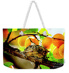 Nesting Hummingbird In Colorado Weekender Tote Bag