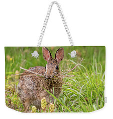 Nesting Rabbit Weekender Tote Bag by Terry DeLuco