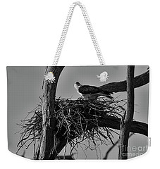 Weekender Tote Bag featuring the photograph Nesting V2 by Douglas Barnard