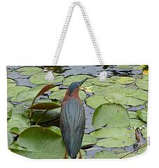 Nevis Bird Observes Weekender Tote Bag