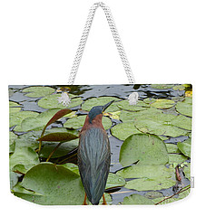 Nevis Bird Observes Weekender Tote Bag by Margaret Brooks