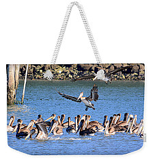 Weekender Tote Bag featuring the photograph New Arrivals by AJ Schibig