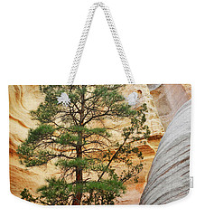 New Mexico Tent Rocks Slot Canyon Tree Landscape Weekender Tote Bag by Andrea Hazel Ihlefeld