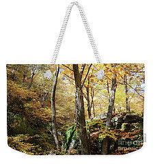 Niche In Smuggler's Notch Weekender Tote Bag by Felipe Adan Lerma
