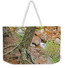 Nidhog Would Gladly Gnaw At These Roots.  Weekender Tote Bag