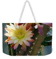 Weekender Tote Bag featuring the photograph Night-blooming Cereus 4 by Marilyn Smith