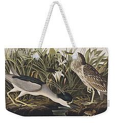 Night Heron Or Qua Bird Weekender Tote Bag