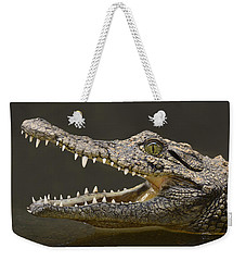 Nile Crocodile Weekender Tote Bag