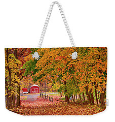 Weekender Tote Bag featuring the photograph No Place I Rather Be by Rima Biswas