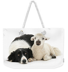No Sheep Jokes, Please Weekender Tote Bag