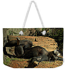 Weekender Tote Bag featuring the photograph No Worries by Jessica Brawley
