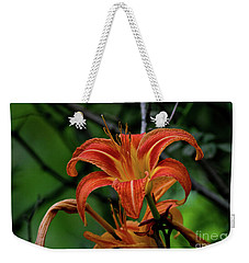 Weekender Tote Bag featuring the photograph Norris Lake Daylily 2 by Douglas Stucky