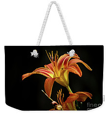 Weekender Tote Bag featuring the photograph Norris Lake Daylily by Douglas Stucky