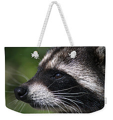 North American Raccoon Profile Weekender Tote Bag by Sharon Talson