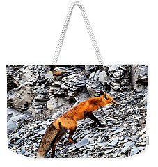 Weekender Tote Bag featuring the photograph North American Red Fox by Daniel Hebard