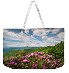 North Carolina Spring Flowers Mountain Landscape Blue Ridge Parkway Asheville Nc Weekender Tote Bag