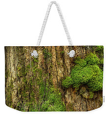 Weekender Tote Bag featuring the photograph North Side Of The Tree by Mike Eingle