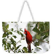 Northern Cardinal - In The Wind Weekender Tote Bag