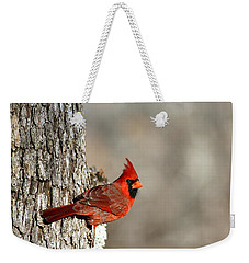 Northern Cardinal On Tree Weekender Tote Bag