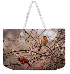Weekender Tote Bag featuring the photograph Northern Cardinal Pair In Spring by Terry DeLuco