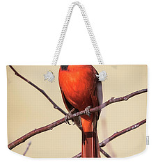 Northern Cardinal Profile Weekender Tote Bag by Ricky L Jones