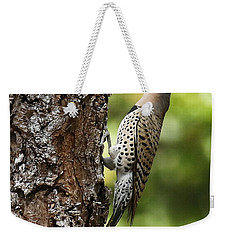 Northern Flicker On The Hunt Weekender Tote Bag