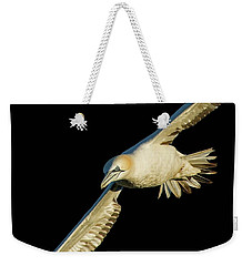 Northern Gannet Flight Closeup Weekender Tote Bag