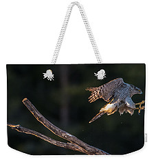 Northern Goshawk's Landing Weekender Tote Bag by Torbjorn Swenelius