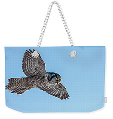 Weekender Tote Bag featuring the photograph Northern Hawk Owl Hunting by Mircea Costina Photography