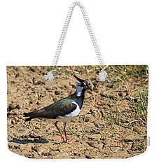 Northern Lapwing Weekender Tote Bag