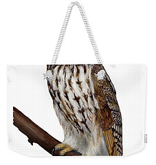 Northern Long-eared Owl Asio Otus - Hibou Moyen-duc - Buho Chico - Hornuggla - Nationalpark Eifel Weekender Tote Bag