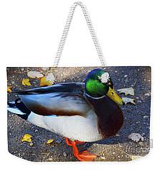 Northern Male Mallard Duck Weekender Tote Bag