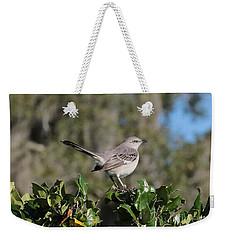 Northern Mockingbird Weekender Tote Bag by Carol Groenen