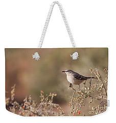 Northern Mockingbird On A Branch  Weekender Tote Bag