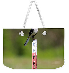 Weekender Tote Bag featuring the photograph Northern Mockingbird Posing  by Ricky L Jones