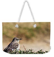 Northern Mockingbird Sitting On Top Of A Hedge Weekender Tote Bag