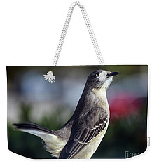 Northern Mockingbird Up Close Weekender Tote Bag