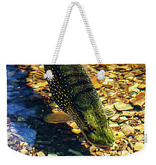 Northern Pike Weekender Tote Bag by Richard Engelbrecht