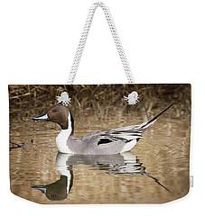 Northern Pintail Drake Weekender Tote Bag