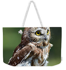 Northern Saw Whet Owl Weekender Tote Bag by Amy Porter