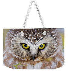 Weekender Tote Bag featuring the photograph Northern Saw-whet Owl Portrait by Mircea Costina Photography