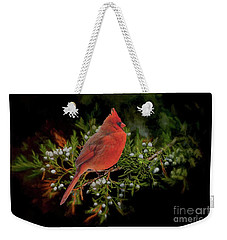 Weekender Tote Bag featuring the photograph Northern Scarlet Cardinal On White Berries by Janette Boyd