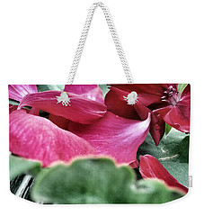 Weekender Tote Bag featuring the photograph Not A 4 Leaf Clover by Robert Knight
