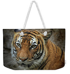 Weekender Tote Bag featuring the photograph Not A Happy Sita by Elaine Malott