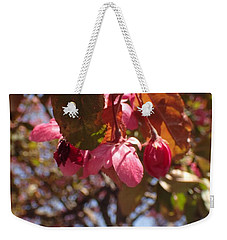 Weekender Tote Bag featuring the photograph Not Far From The Tree by Christina Verdgeline