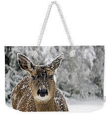 Weekender Tote Bag featuring the photograph Not Happy - 365-279 by Inge Riis McDonald