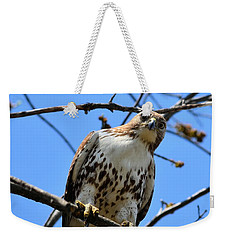 Not Polite To Stare Weekender Tote Bag by Kathy Eickenberg