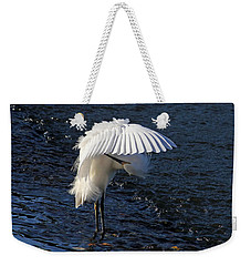 Weekender Tote Bag featuring the photograph Not Under Here - Birds - Snowy Egret by HH Photography of Florida